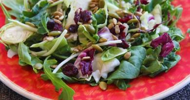 Salade chou-chou aux canneberges
